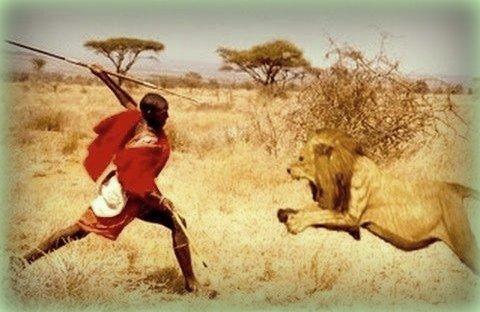 maszáj harcos egy oroszlán ellen