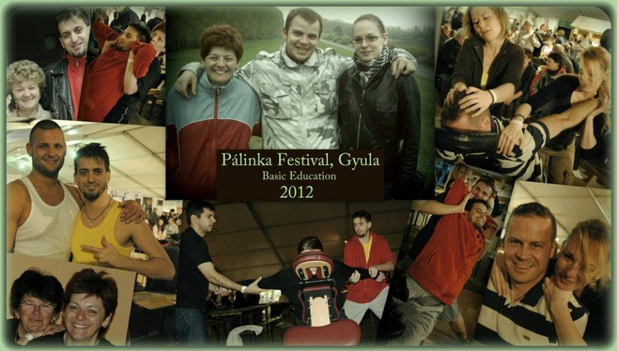 Pálinka Fesztivál, alapképzés 2012