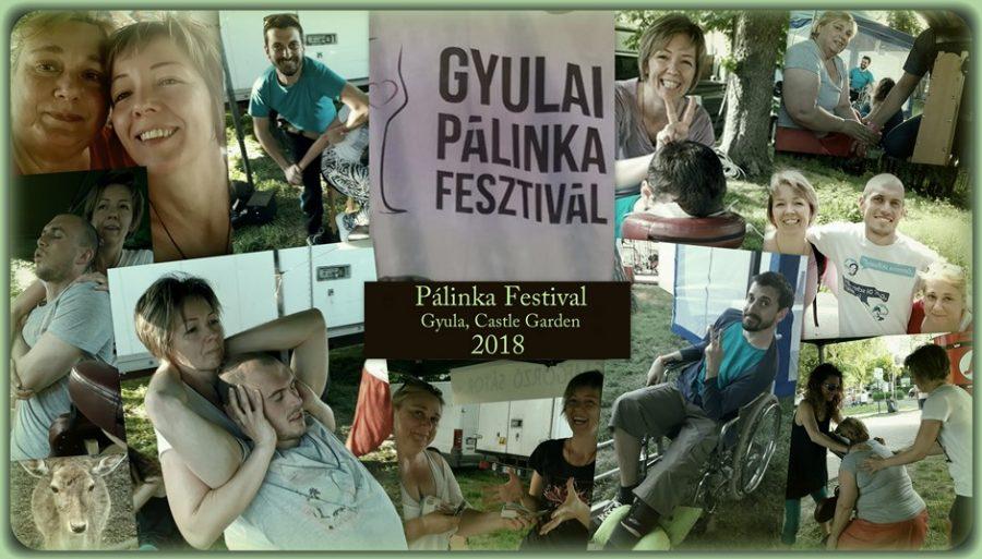Pálinka Fesztivál Gyula 2018